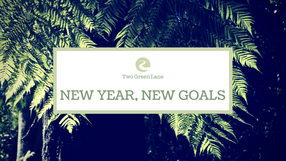 16-new-year-new-goals