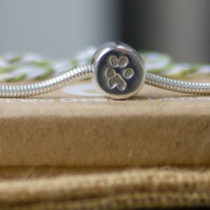 Pandora Style Bead 2